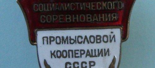Для чего советское руководство…